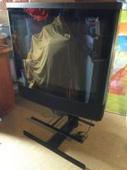 Fernseher Bang und