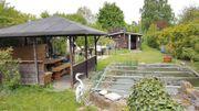 Garten in Hassloch