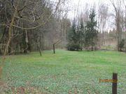 Wiesen-/Waldgrundstück 18.
