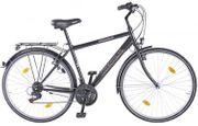 Fahrrad Herren-Trekking-