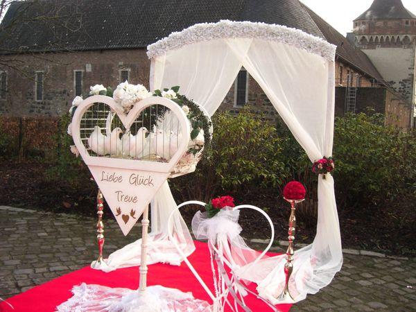 Guvercin Weisse Hochzeitstauben Dusseldorf Koln Monchengladbach