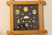 Militärabzeichen UdSSR Originale