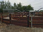 98 Führanlage Pferdezaun Weidezaun Pferdebox