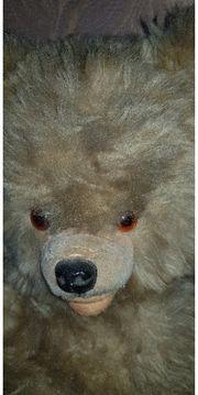 alte schöne Teddybär
