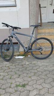 Crossbike von Stevens