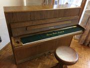 Euterpe Klavier, Piano