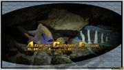 Suche Cyhotiapia giberrosa blue Zaire