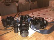 Spiegelreflexkameras Canon EOS
