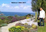 Reisepartnerin Mallorca