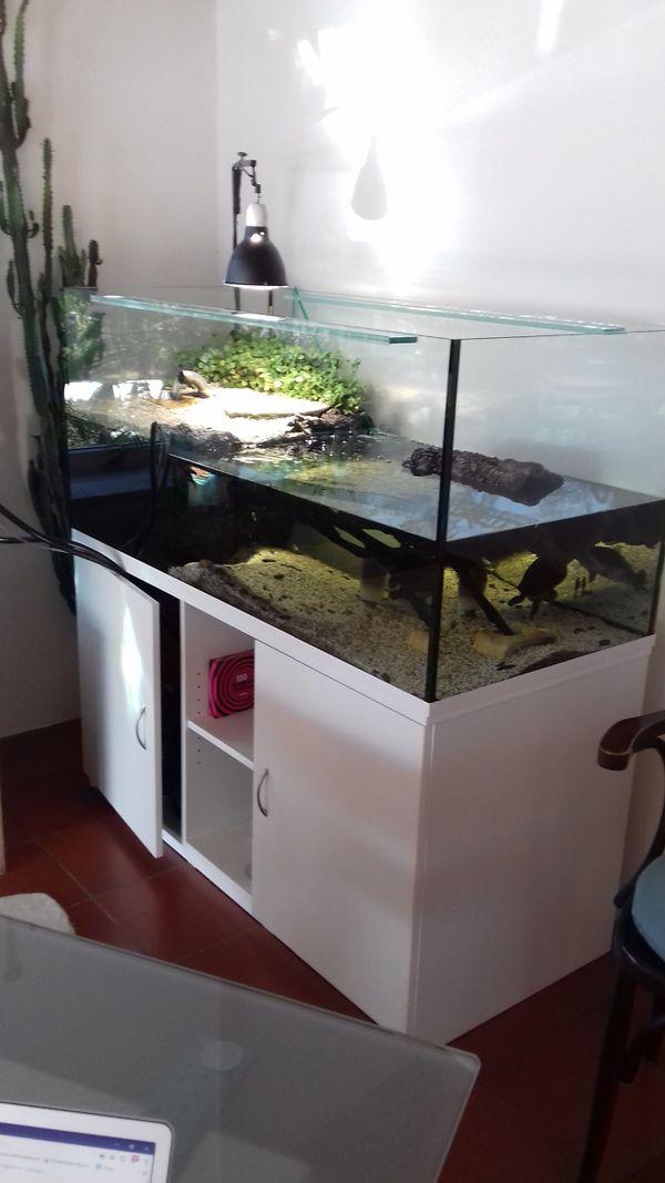 aquarium 500 liter gebraucht kaufen nur 2 st bis 70 g nstiger. Black Bedroom Furniture Sets. Home Design Ideas