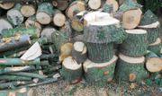 Brennholz