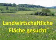 Suche Pferdestall Bauernhof Grundstück landwirts