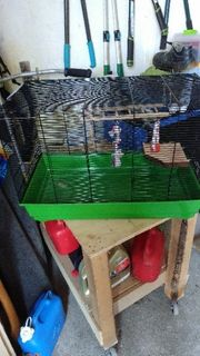 Hamster käfieg