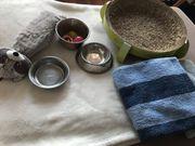 Katzenzubehör Spielzeug Napf Handtücher Korb