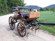 Jagdwagen Marathonwagen Holzkutsche Pferdekutsche Hochzeitskutsche