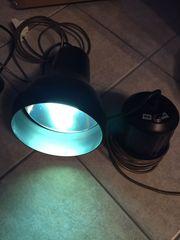 Pflanzenlampen für Aquarium oder Terrarium
