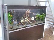 500 Liter Designer Aquarium Fluval