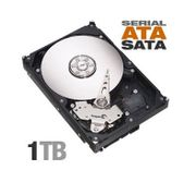 1TB SATA Festplatten/
