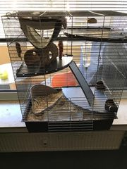 Vogel- Nagerkäfig