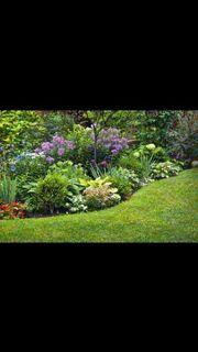 Gartenstück,Schrebergarten