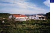 Spanien Pferde Finca - Bei Murci