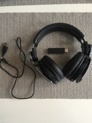 Sony Pulse Headset