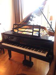 Grand Piano Blüthner 1930 Restauriert