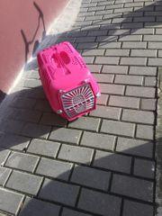 Katze Transport Box