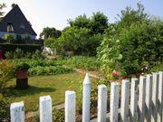 Gepflegter Garten mit