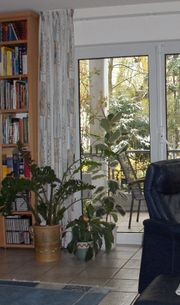 Gardinen, Jalousien in Gummersbach   gebraucht und neu kaufen