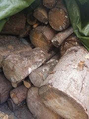 Brennholz 1SRM