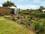 Garten zu Verkaufen wegen Krankheit