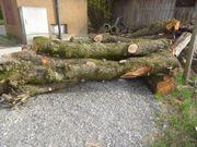 Stammholz Birne Holz drechseln tischlern