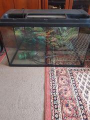 Aquarium M P