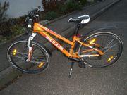 Mädchen-Mountainbike 24 Bulls orange 21