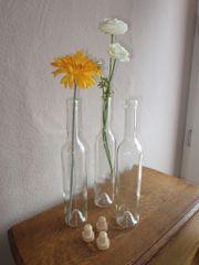 Glasflaschen - 12 St. -