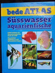 Ratgeber zu Süsswasseraquarienfische