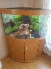 Juwel ECK Aquarium 190 Liter