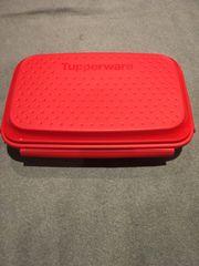 Tupperware Marinierstar Flip Shake