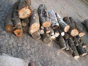 Brennholz Stammholz 2 5m³ Eiche