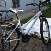 Fahrrad x-fact 26 zoll Fahrrad