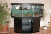 Aquarium Juwel 450