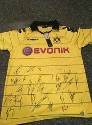 Trikot BVB Dortmund