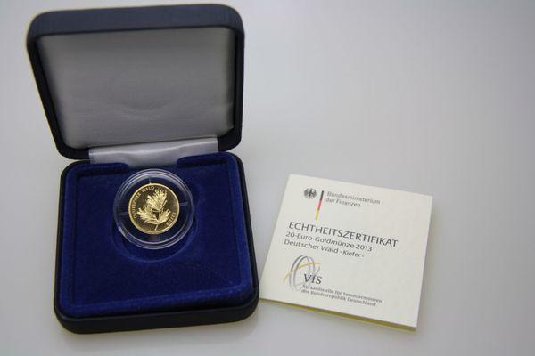 20 Euro Goldmünze 2013 Hamburg Deutsche Kiefer 9999 Feingold In