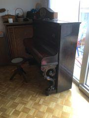 ser gutes pian