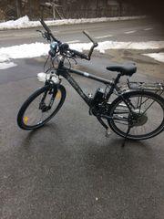 Mountain - E-Bike