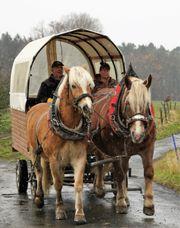 Planwagen für Pferdegespann