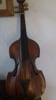 Nr.308 Viola