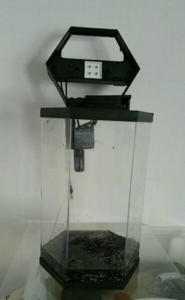 aquaristik in erlenbach kreis heilbronn neckar bei deinetierwelt. Black Bedroom Furniture Sets. Home Design Ideas