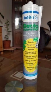 Gecko Hybrid Pop